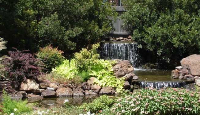 Large waterfall secluded in wooded back yard