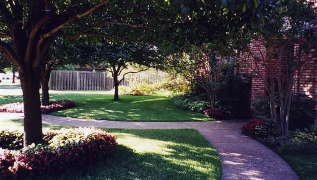 Walkway through yard
