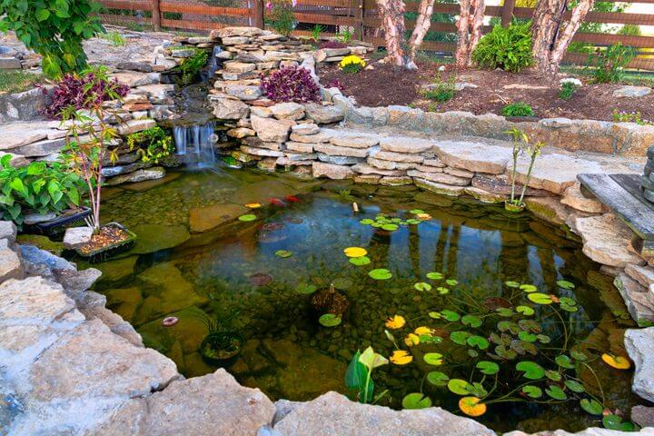 Dress up your koi pond with plants and rocks peterson 39 s for Rock ponds designs