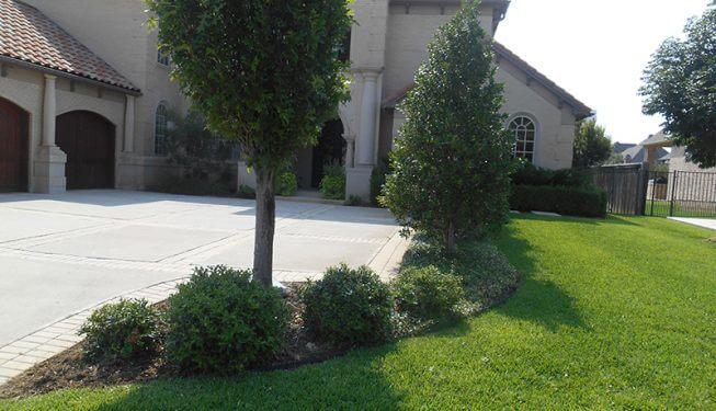 Trees and Stone Walkway - Azmabalani-Paradis Home
