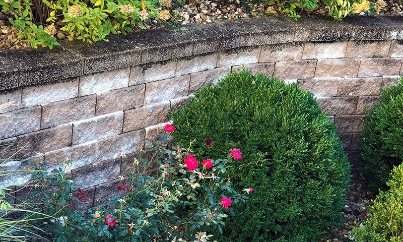 Annapolis Neck Retaining Wall and Garden Wall Construction
